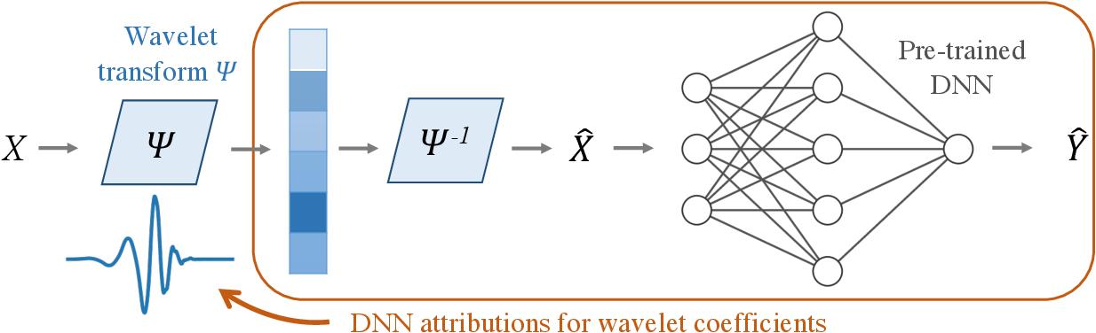 Figure 1 for Adaptive wavelet distillation from neural networks through interpretations