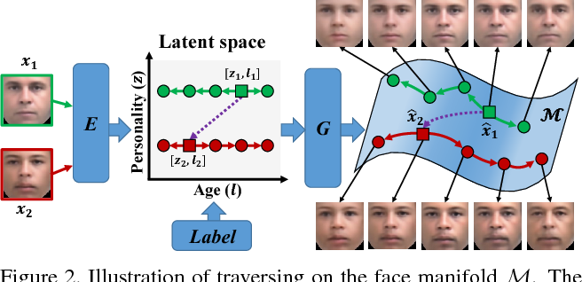 Figure 2 for Age Progression/Regression by Conditional Adversarial Autoencoder