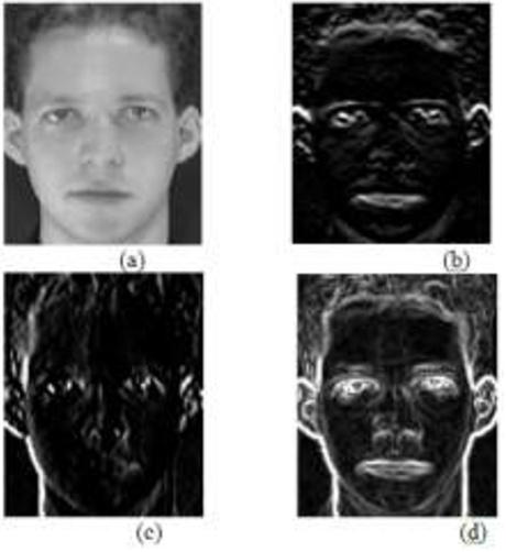 Figure 2 from Improved Face Recognition Rate Using HOG Features and