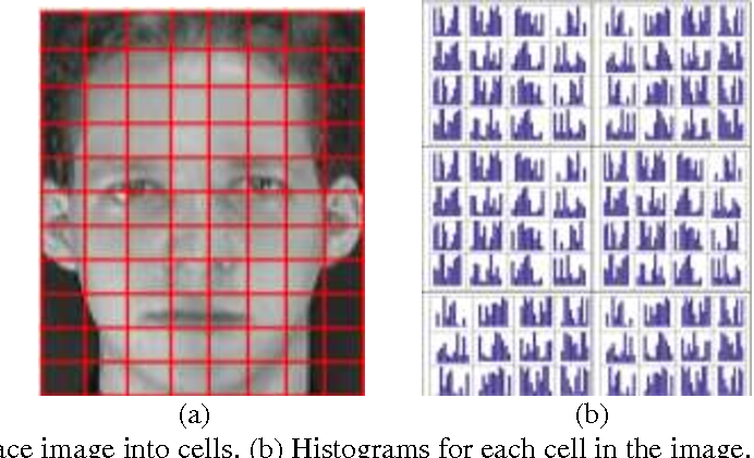 Figure 3 from Improved Face Recognition Rate Using HOG Features and