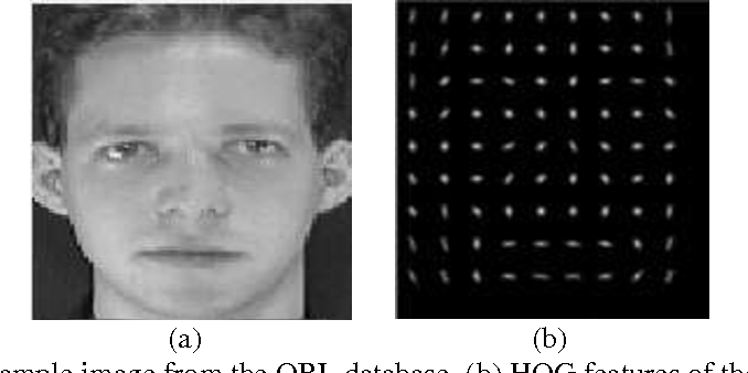 Figure 4 from Improved Face Recognition Rate Using HOG Features and