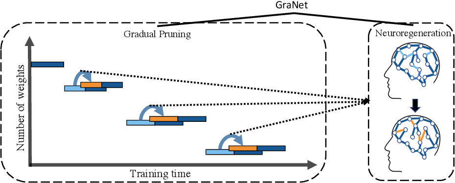 Figure 1 for Sparse Training via Boosting Pruning Plasticity with Neuroregeneration