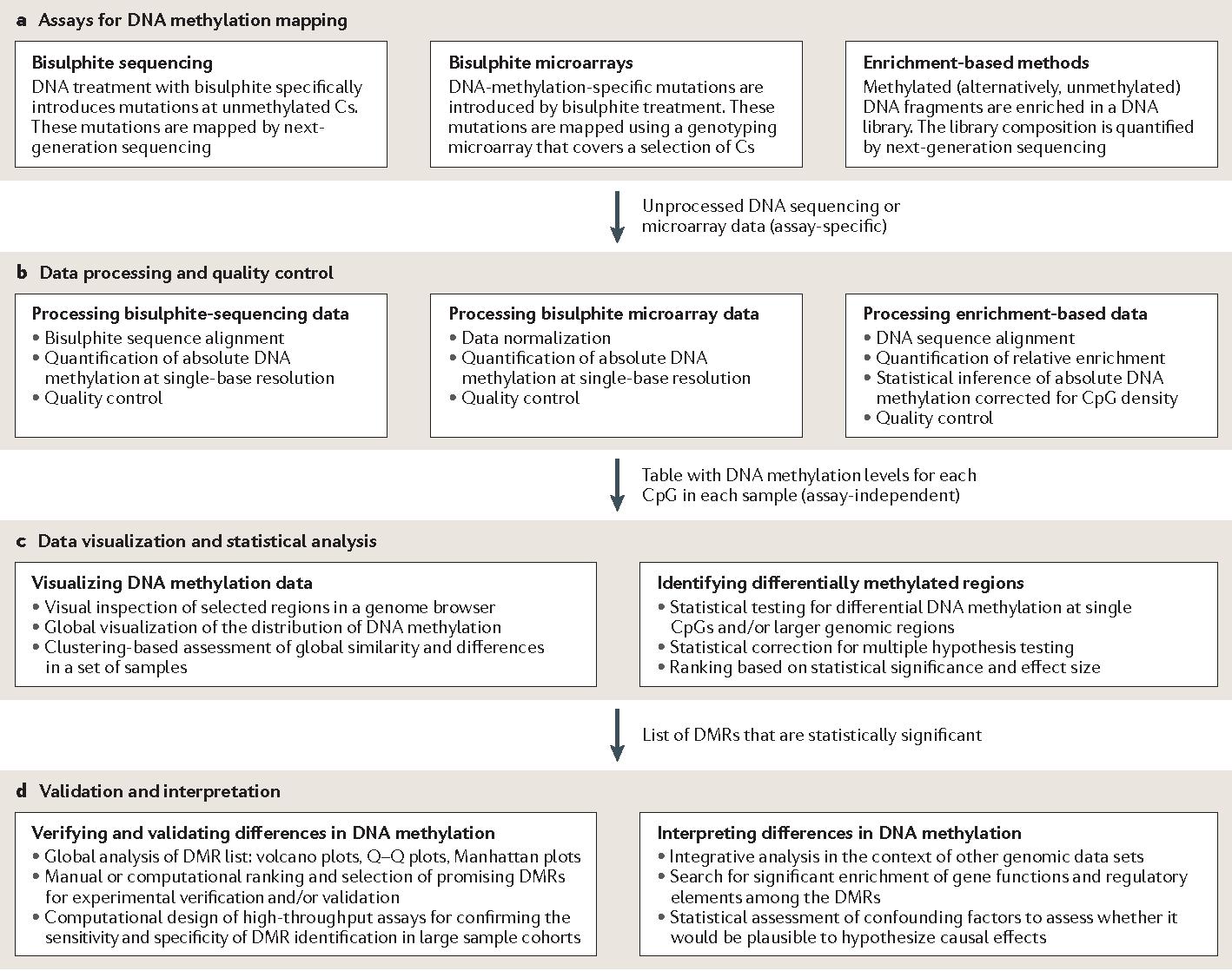 Analysing and interpreting dna methylation data semantic scholar figure 1 malvernweather Choice Image