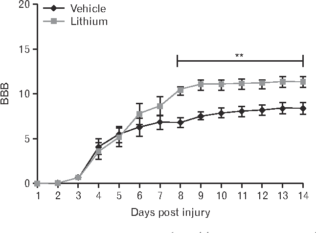 Lithium Ameliorates Rat Spinal Cord Injury By Suppressing Glycogen