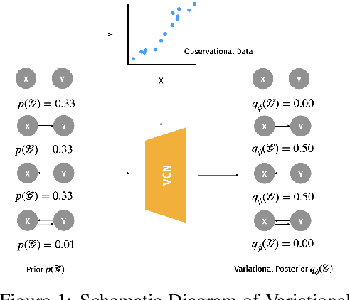 Figure 1 for Variational Causal Networks: Approximate Bayesian Inference over Causal Structures