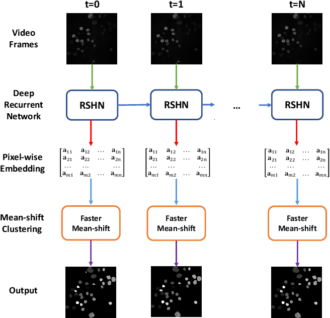 Figure 2 for Faster Mean-shift: GPU-accelerated Embedding-clustering for Cell Segmentation and Tracking