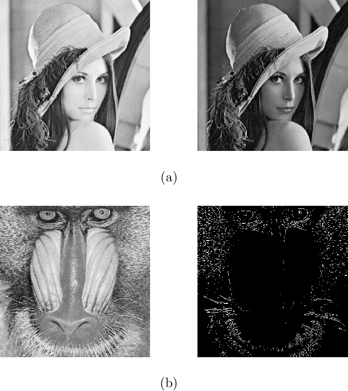 Figure 1 for Distributed High Dimensional Information Theoretical Image Registration via Random Projections