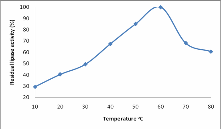 effect of temperature on lipase essay Effect of temperature, moisture, and carbon supplementation on lipase production by solid-state fermentation of soy cake by penicillium simplicissimum.
