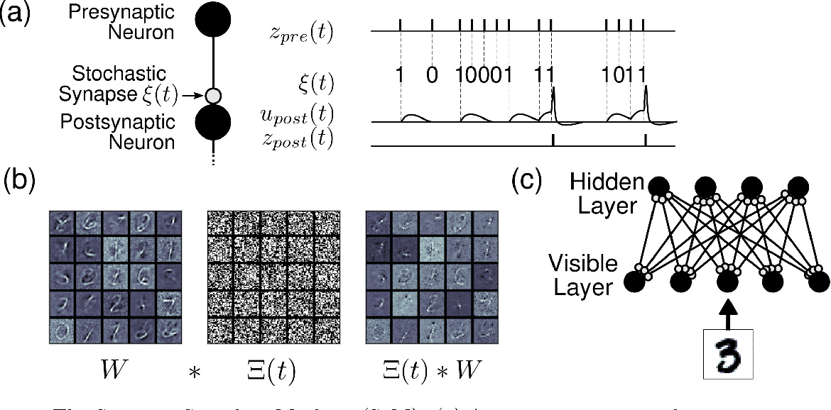 Figure 1 for Stochastic Synapses Enable Efficient Brain-Inspired Learning Machines