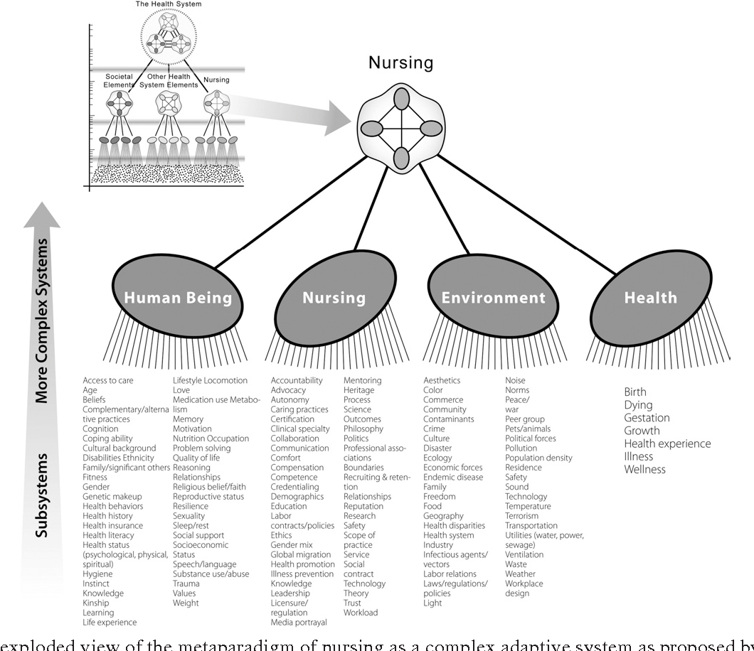 7 Figure8 1 figure 8 from a model of nursing as a complex adaptive system