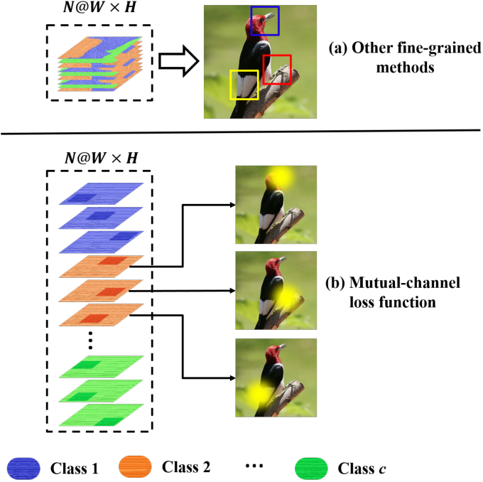 Figure 1 for The Devil is in the Channels: Mutual-Channel Loss for Fine-Grained Image Classification