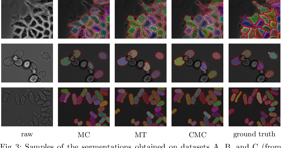 Figure 4 for The Candidate Multi-Cut for Cell Segmentation