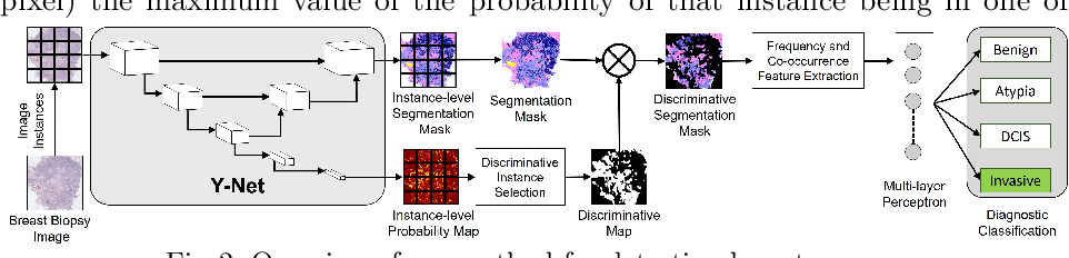 Figure 3 for Y-Net: Joint Segmentation and Classification for Diagnosis of Breast Biopsy Images