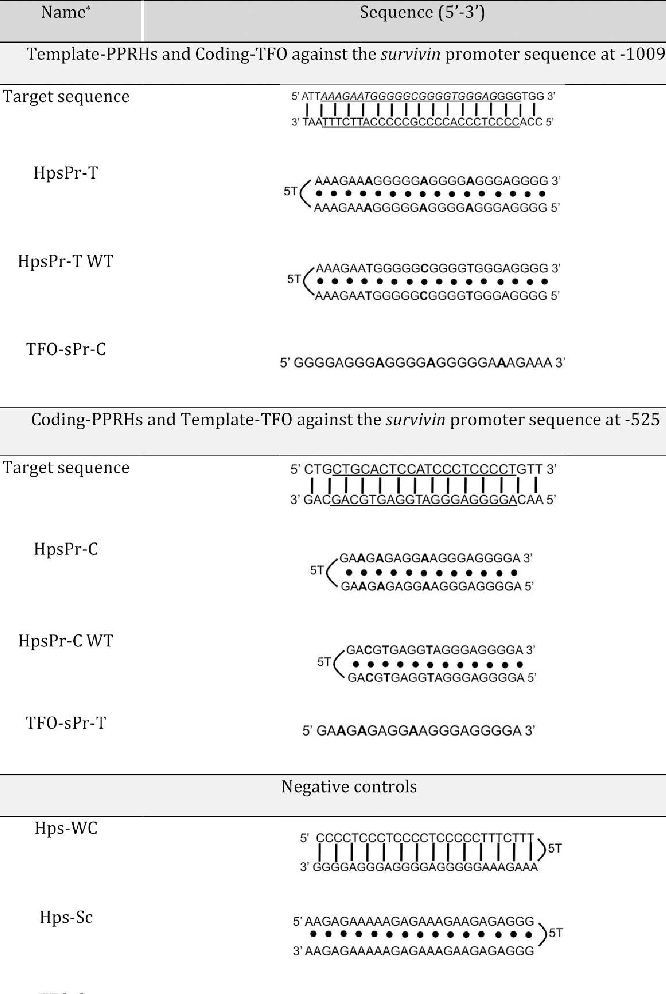 Table 2. DNA Oligonucleotides Sequences, PPRHs, and TFOs Directed against the Survivin Gene