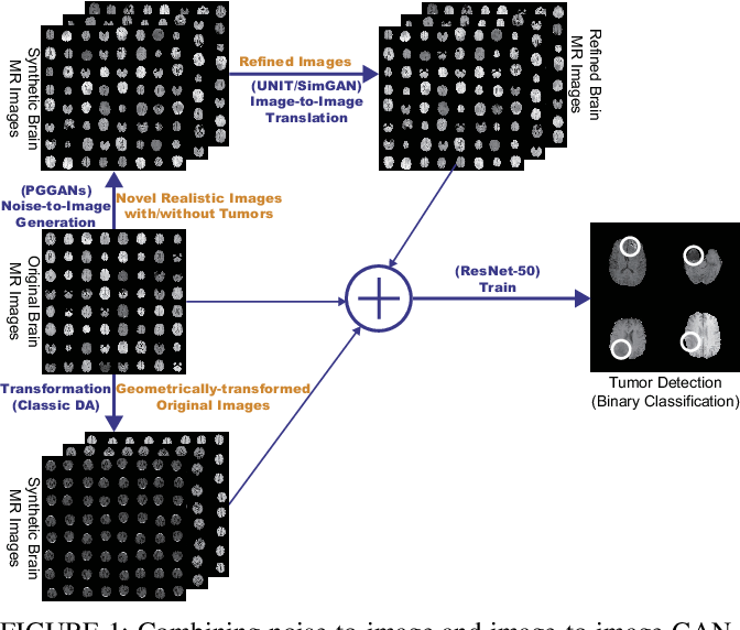 Figure 1 for Combining Noise-to-Image and Image-to-Image GANs: Brain MR Image Augmentation for Tumor Detection