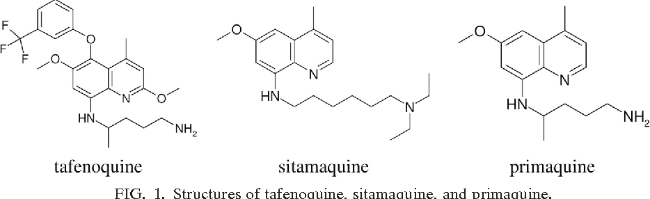 Image result for tafenoquine DRUG FUTURE