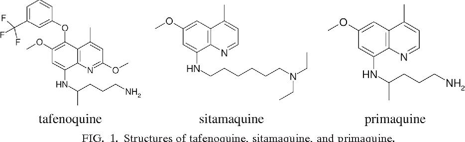 Image result for tafenoquine DRUG FUTURE