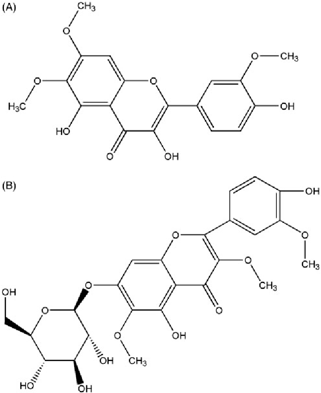 A Flavonoid Compound From Chrysosplenium Nudicaule Inhibits Growth