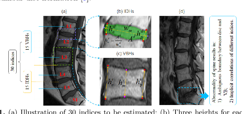 Figure 1 for Direct Automated Quantitative Measurement of Spine via Cascade Amplifier Regression Network