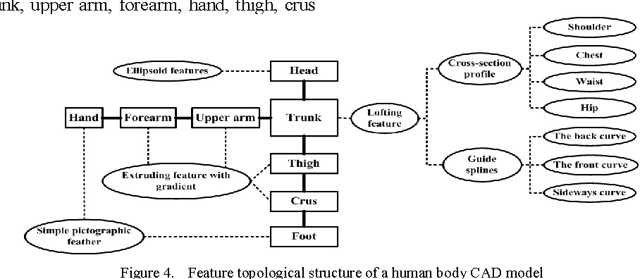 Figure 4. Feature topological structure of a human body CAD model
