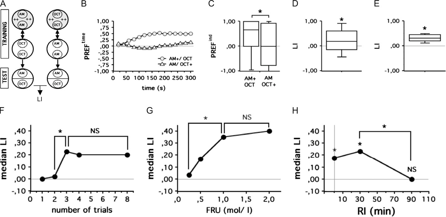 The Drosophila larva as a model for studying chemosensation and ...