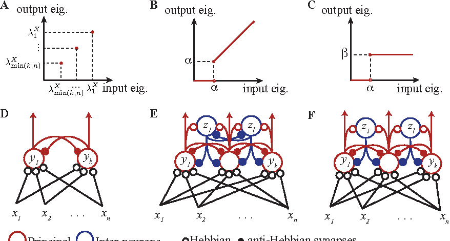 Figure 1 for Optimization theory of Hebbian/anti-Hebbian networks for PCA and whitening
