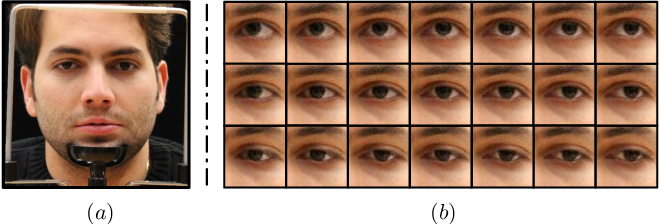 Figure 1 for Photo-realistic Monocular Gaze Redirection using Generative Adversarial Networks