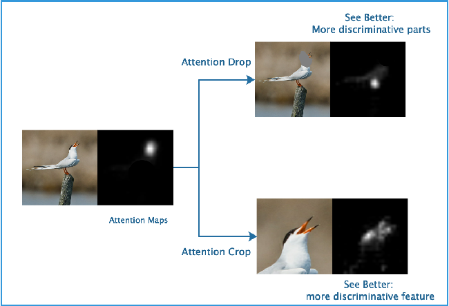 Figure 1 from See Better Before Looking Closer: Weakly Supervised