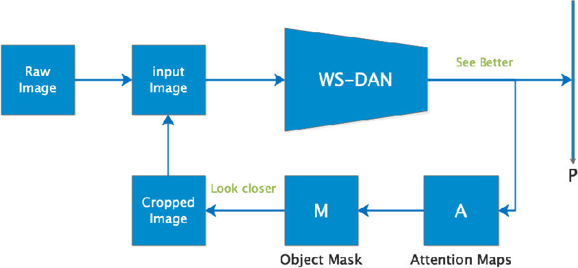 Figure 2 from See Better Before Looking Closer: Weakly
