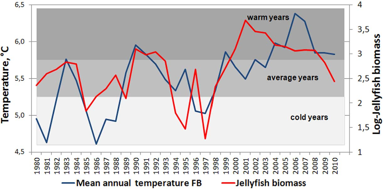 Figure 3. The mean annual water temperature at the Fugløya-Bear Island section (left axis) and the log transformed jellyfish biomass indices (right axis).
