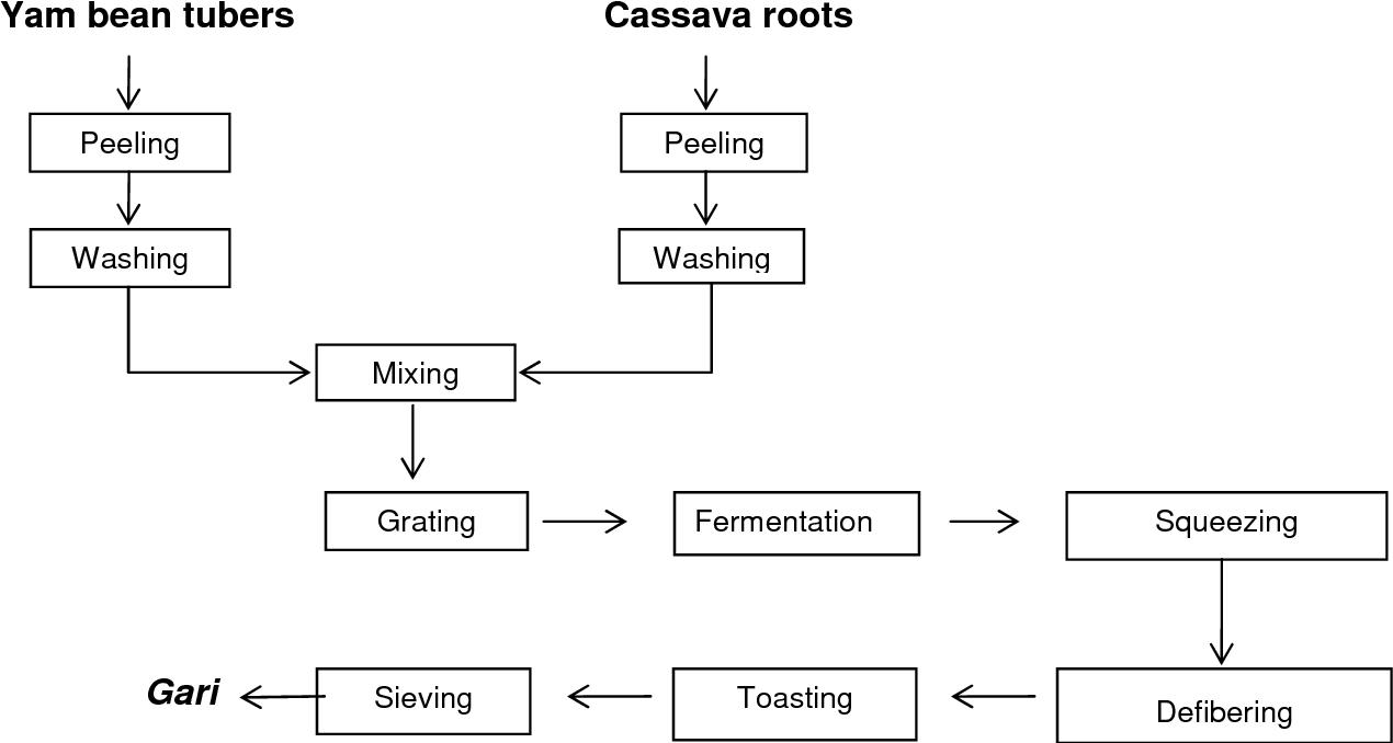 7 Figure1 1 figure 1 from yam bean ( pachyrhizus erosus ) tuber processing in