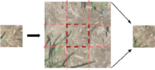 Figure 4 for Automated Grassy Weed Detection in Aerial Imagery with Context