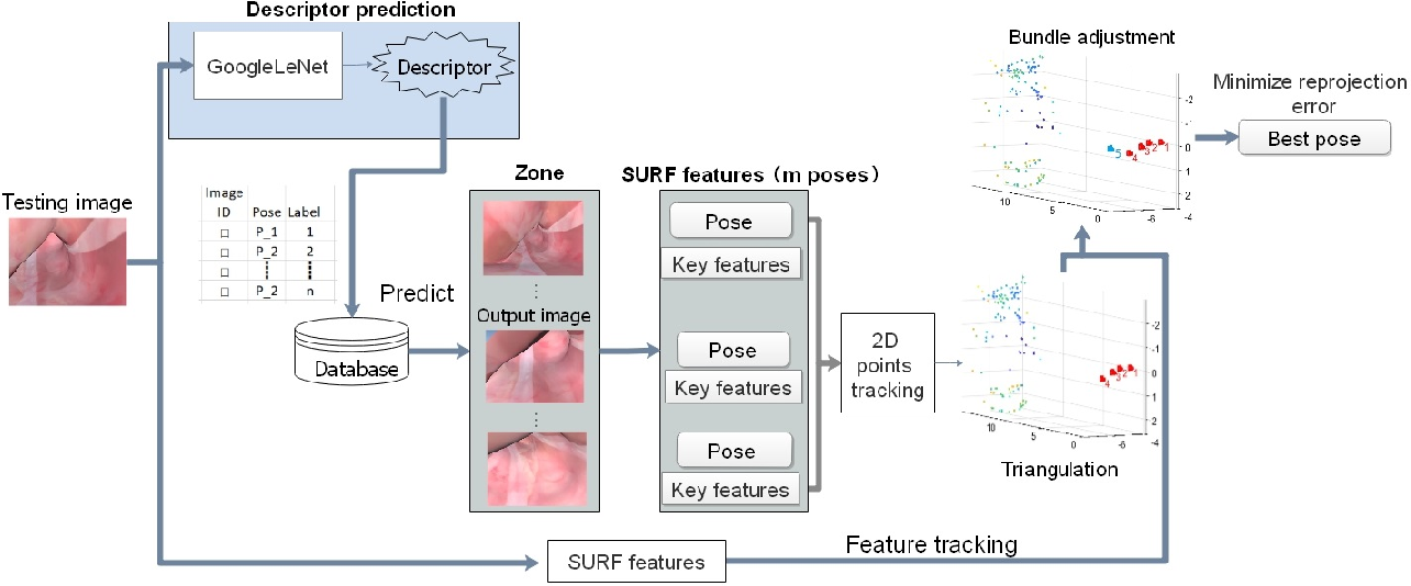 Figure 4 for Combining Deep Learning with Geometric Features for Image based Localization in the Gastrointestinal Tract