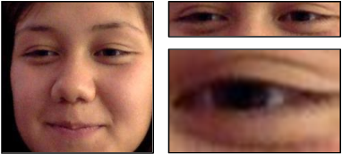 Figure 4 for Efficiency in Real-time Webcam Gaze Tracking