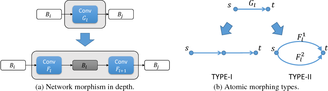 Figure 1 for Modularized Morphing of Neural Networks