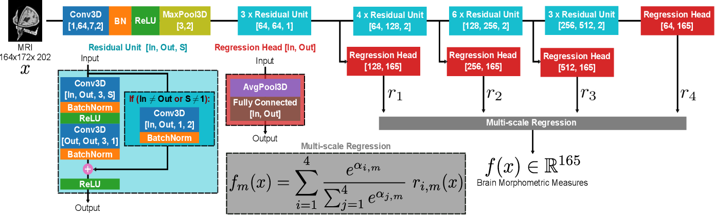 Figure 2 for Going deeper with brain morphometry using neural networks