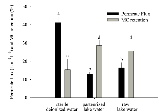FIGURE 3 | MC retention test: permeate flux and MC retention measured 22 h after addition of MC-containing biomass to the GDM system (means ± one standard deviation). Letters denote treatments that are significantly different for the permeate flux and for the MC retention, respectively (ANOVA followed by Tukey's HSD tests, p < 0.001–0.05).
