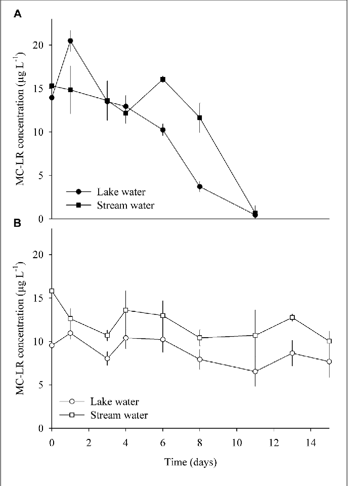 FIGURE 6 | MC degradation in enrichment cultures amended with pure MC, using water from the lake and stream, respectively, and incubated under (A) anaerobic and (B) aerobic conditions (means ± one standard deviation of three replicate incubations).
