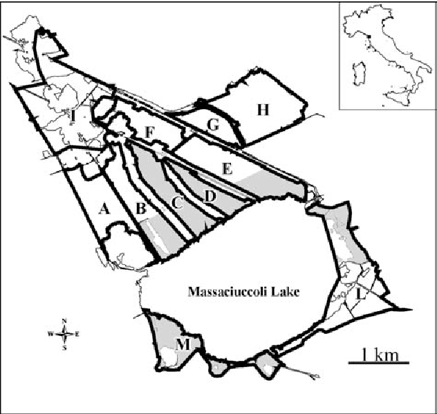 Figure 1. Study area and its location in Italy (upper right): the marsh has been subdivided into sectors, each of which is encircled by a thick line and indicated by a letter; the grey areas refer to reserves.