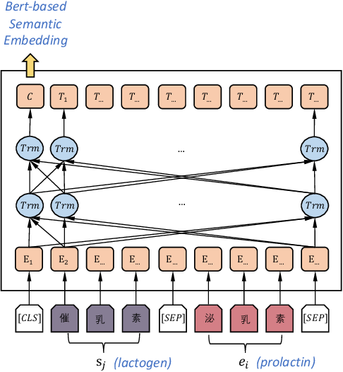Figure 4 for Enriching Medcial Terminology Knowledge Bases via Pre-trained Language Model and Graph Convolutional Network