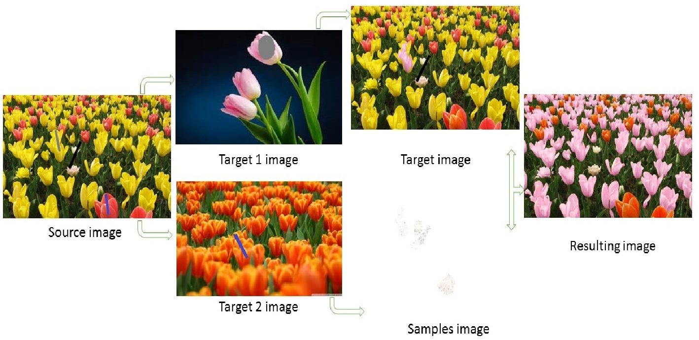 Figure 2 for Fast color transfer from multiple images