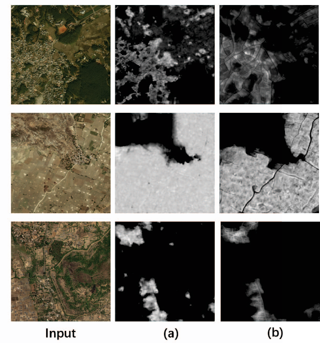 Figure 3 for Dense Fusion Classmate Network for Land Cover Classification