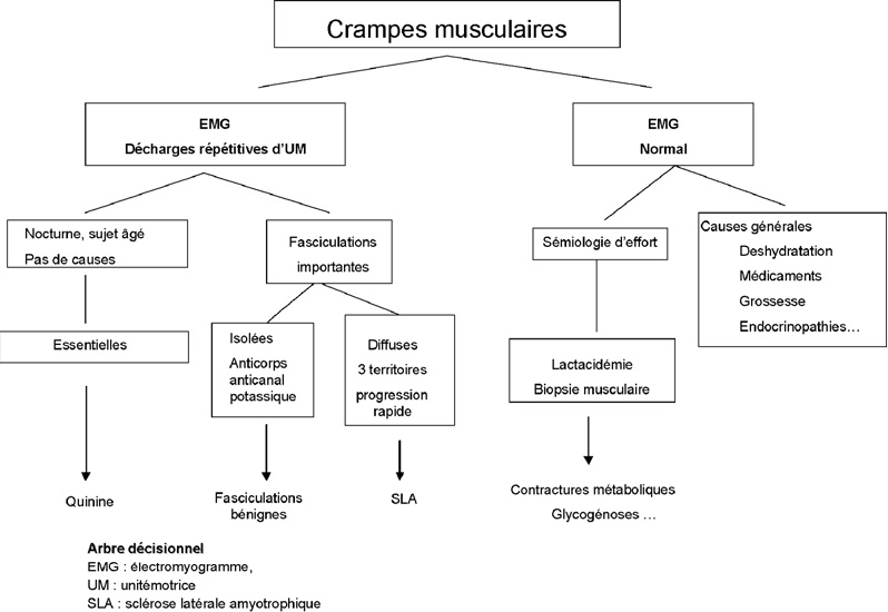 Primary muscle cramps]  - Semantic Scholar