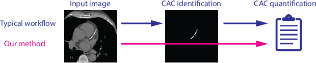 Figure 1 for Direct Automatic Coronary Calcium Scoring in Cardiac and Chest CT