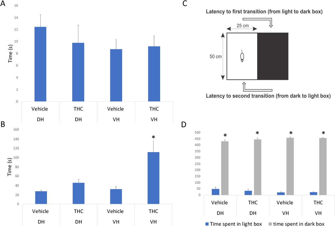 Figure 9 Light dark box. A) No significant difference from transitioning from light to dark side (first transition) B) Rodents with THC infusion in the VH spent a significantly longer time transitioning from dark side to light side