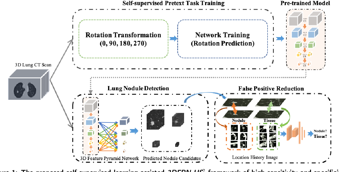 Figure 1 for Accurate and Robust Pulmonary Nodule Detection by 3D Feature Pyramid Network with Self-supervised Feature Learning