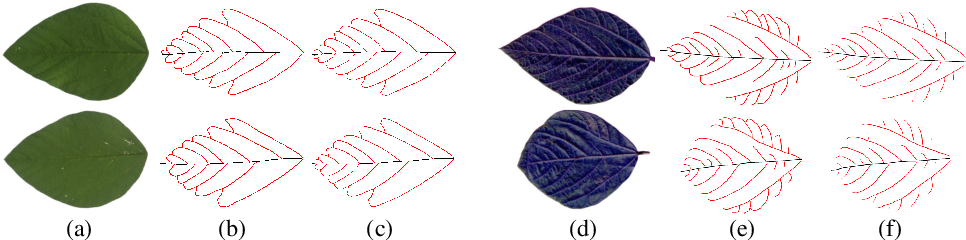 Figure 1 for Mask guided attention for fine-grained patchy image classification