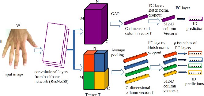 Figure 1 for Hand-Based Person Identification using Global and Part-Aware Deep Feature Representation Learning