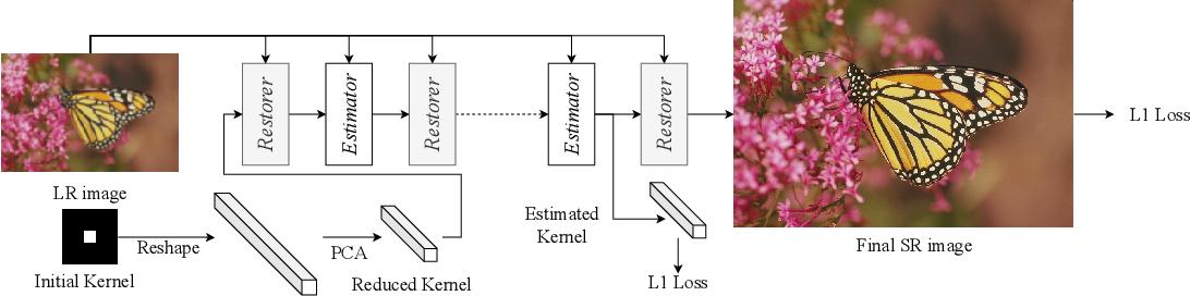 Figure 1 for Unfolding the Alternating Optimization for Blind Super Resolution
