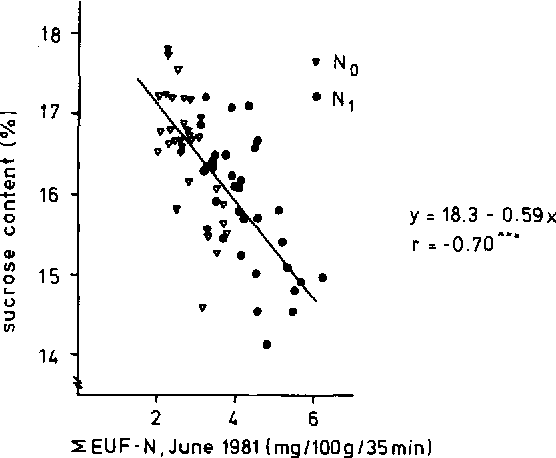 Fig. 2. Relationship between ;CEUF-N content of the topsoil in June and sugar content in 1981.